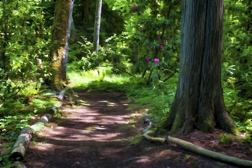 Teaching The Very, Very, Very Long Hike