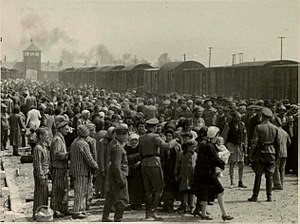 Teaching What was the Holocaust?
