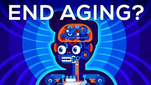 Should we end aging forever? [video]