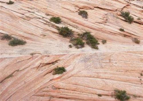 Lithification Of Sedimentary Rocks