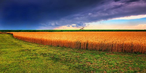 Teaching US Geography Series: The Great Plains