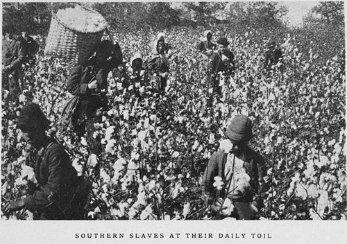 Teaching The Life of the Enslaved Person