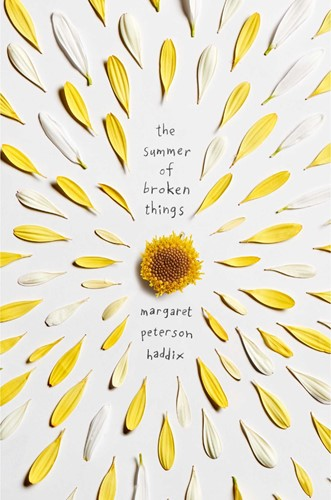 Teaching The Summer of Broken Things