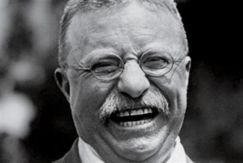 Roosevelt The Revisionist