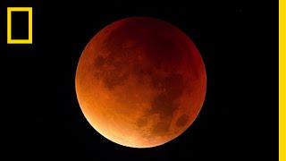 Teaching Lunar Eclipse 101 [video]
