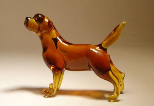Teaching The Glass Dog