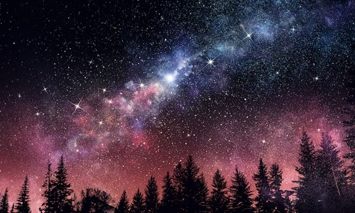 Teaching We should encourage boys and girls to reach for the stars