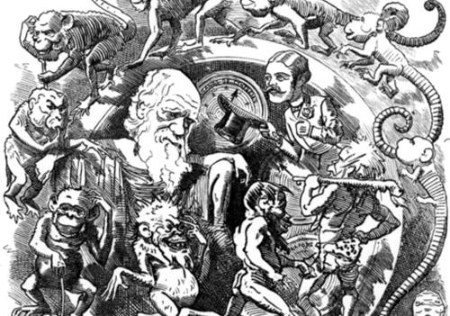 Teaching DBQ: Social Darwinism