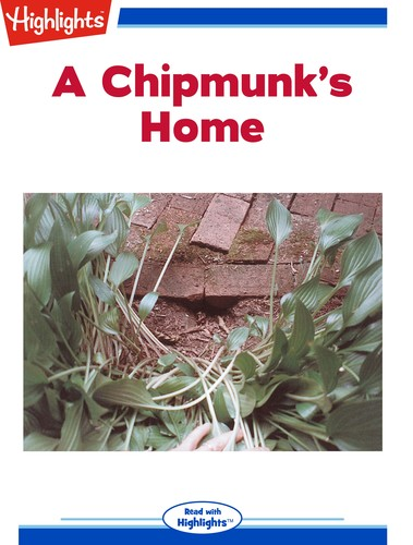 A Chipmunk's Home