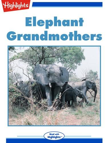 Elephant Grandmothers
