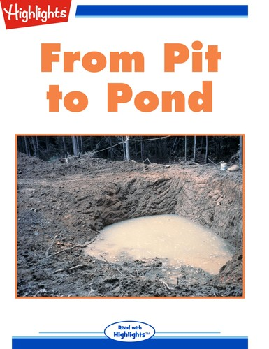 From Pit to Pond