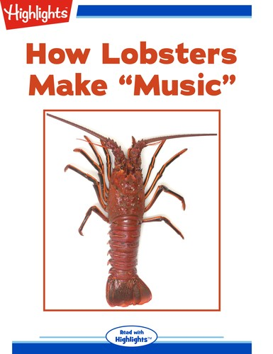 """How Lobsters Make """"Music"""""""
