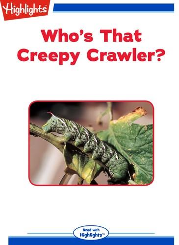 Who's That Creepy Crawler?