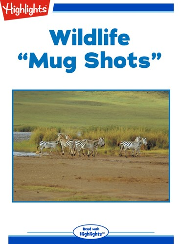 "Wildlife ""Mug Shots"""