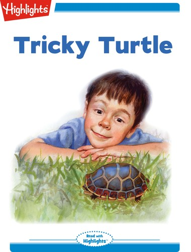 Tricky Turtle