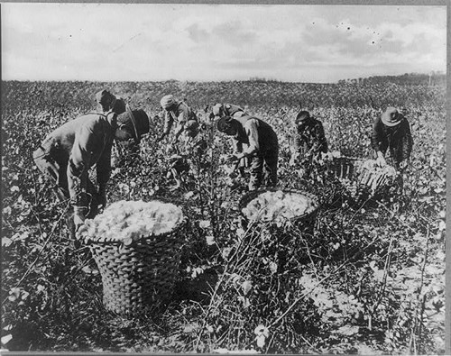 Teaching Slavery and the Demand for Cotton