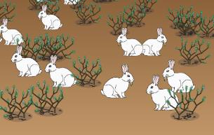 Teaching Natural Selection - Ecosystem Dynamics [PhET Simulation]