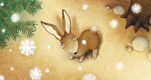 Teaching Snowshoe Hare's Winter Home