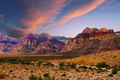Teaching Beautiful Nevada: State facts and symbols