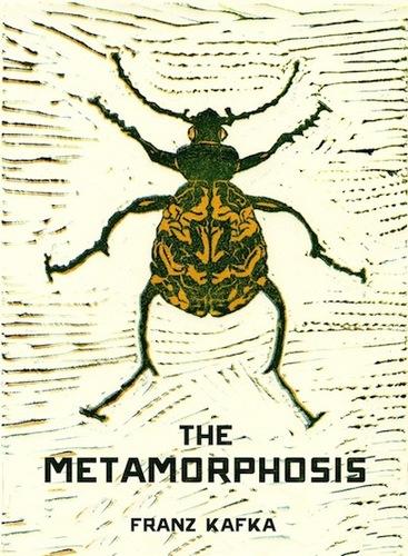 Teaching The Metamorphosis
