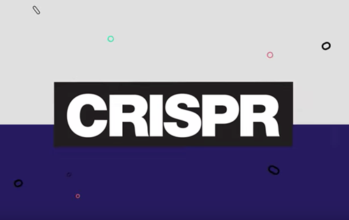 Teaching How CRISPR works [video]