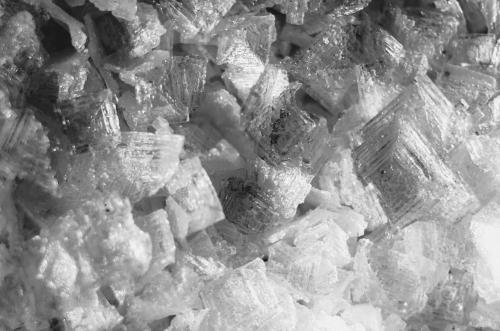 Teaching Kitchen Science: A salt on the senses