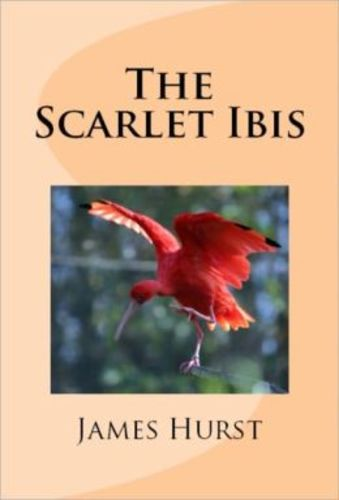 Teaching The Scarlet Ibis