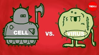 Teaching Cell vs. virus: A battle for health [video]