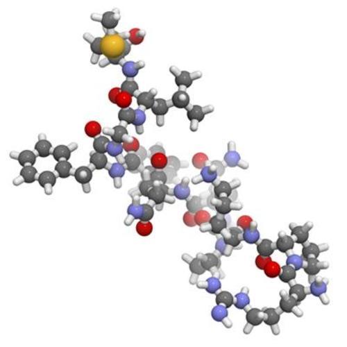 Unit 13: Biochemistry