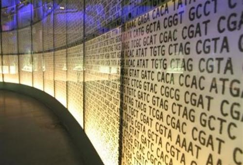 Teaching Human genome