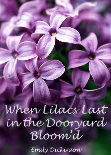 When Lilacs Last in the Dooryard Bloom'd