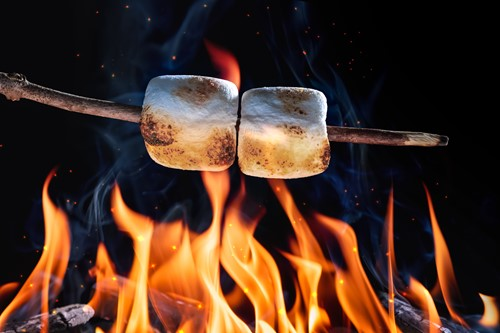 Teaching A brief history of the s'more, America's favorite campfire snack